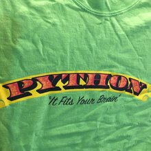 """It Fits Your Brain"" Python T-shirt"