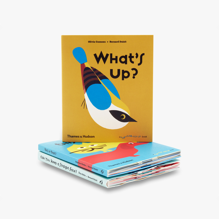 Cover for What's up? Illustrations by Olivia Cosneau, published January 2017.