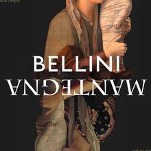 <cite>Bellini/Mantegna</cite>, Fondazione Querini Stampalia