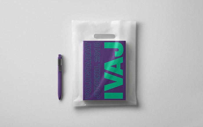 IVAJ – Institut Valencia de la Joventut 8