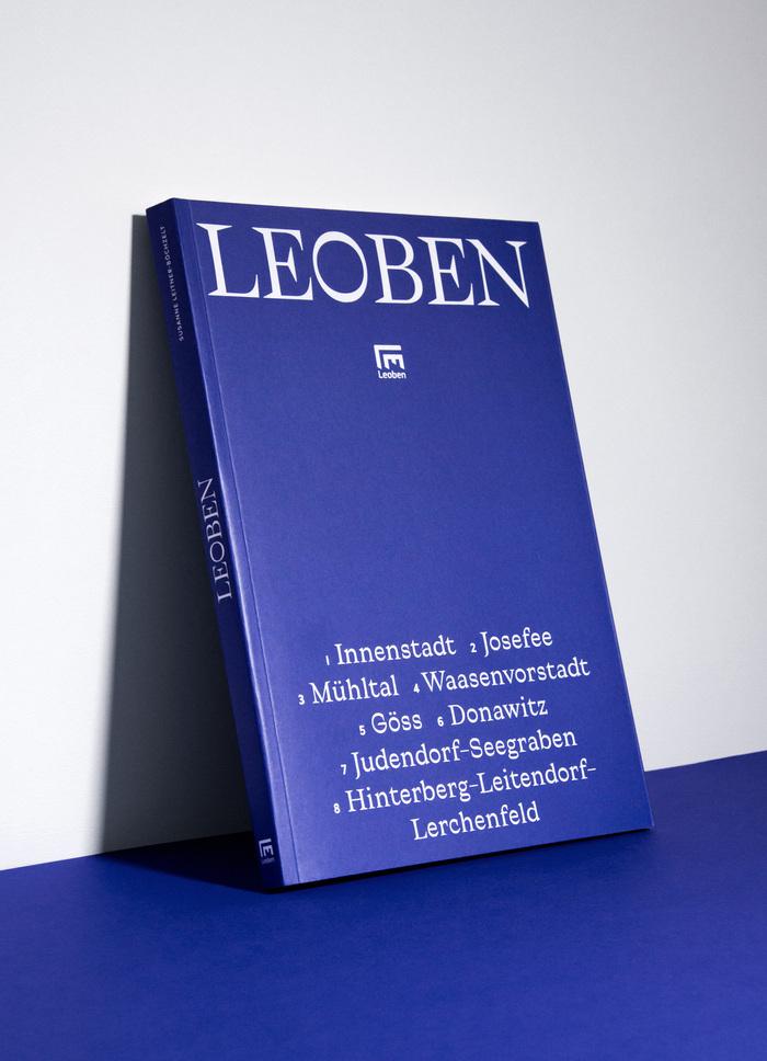 City of Leoben 3