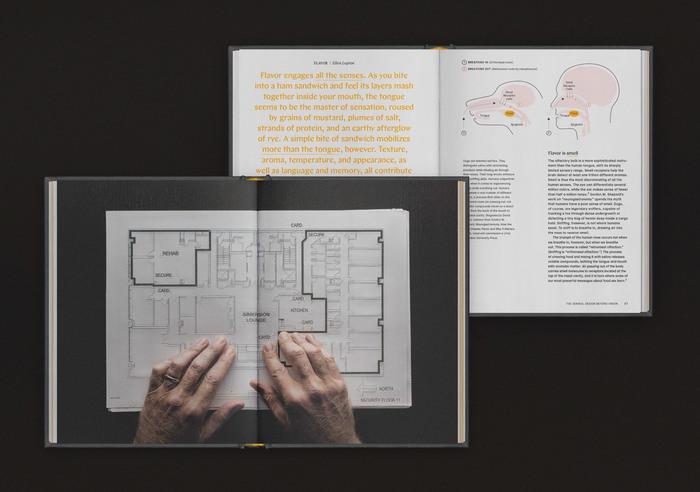 The Senses: Design Beyond Vision 2