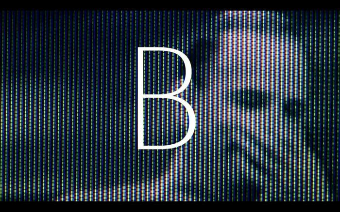 Bergman's Video 2