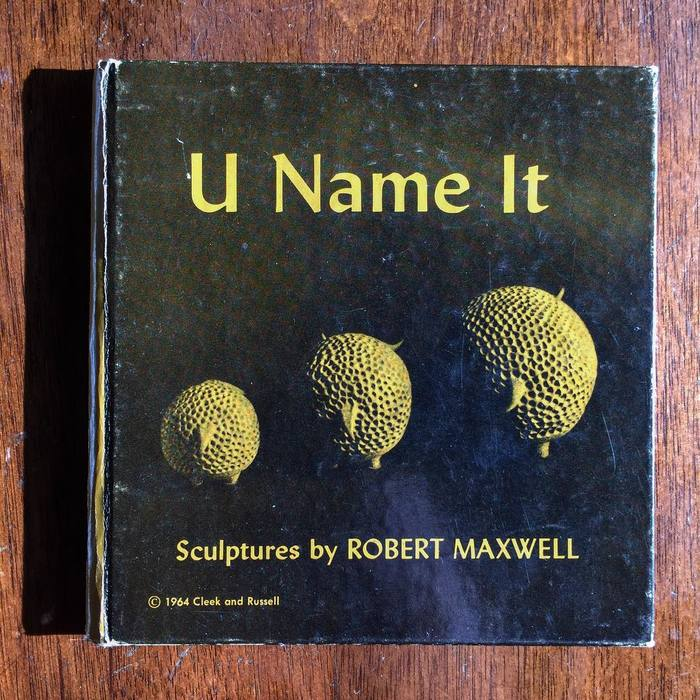 U Name It: Sculptures by Robert Maxwell 1