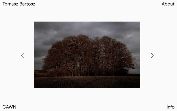 Tomasz Bartosz portfolio website 2