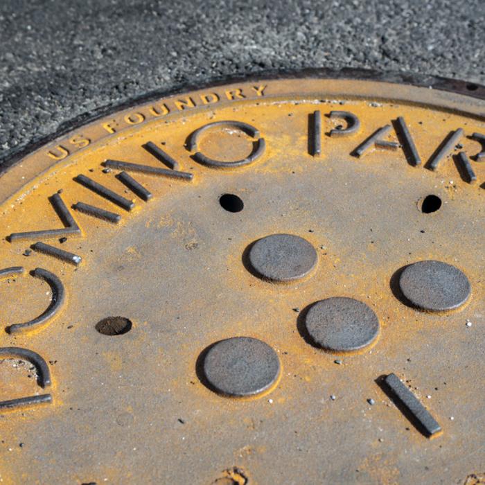 Domino Park 4
