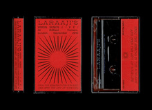 Laraaji – <cite>Vision Songs Live!</cite>