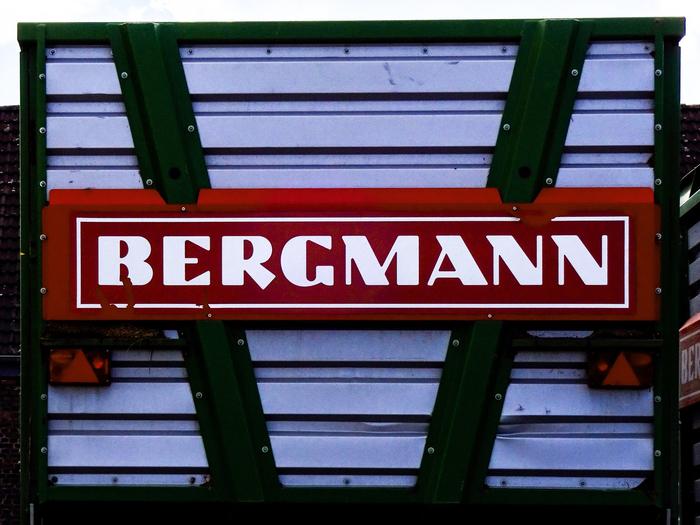Bergmann 1