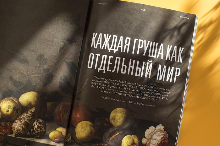 Ambrosia magazine (fictional) 2
