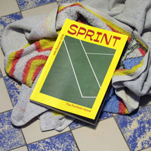 <cite>SPRINT</cite> – The Portfolio Issue