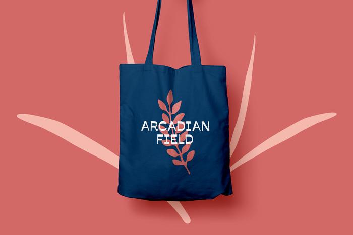 Arcadian Field 3