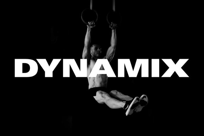 Dynamix 2