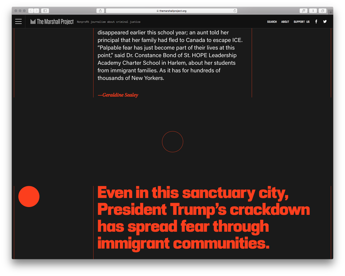 New York on ICE website 2