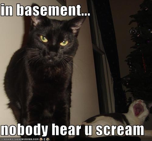LOLcats internet meme 4