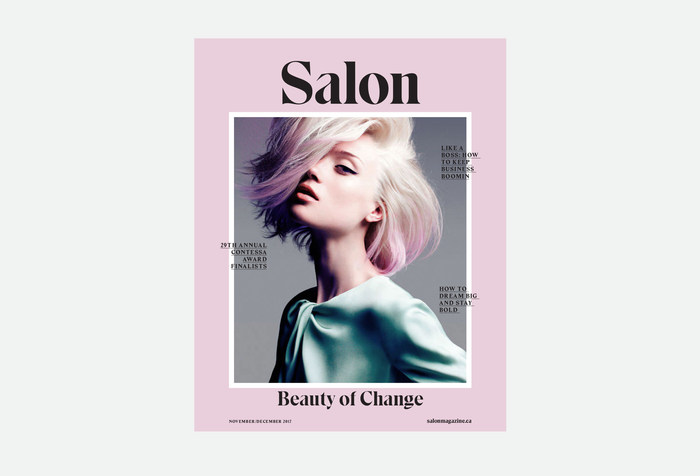 Salon magazine redesign 1