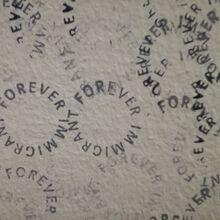 <cite>Forever Immigrant</cite>