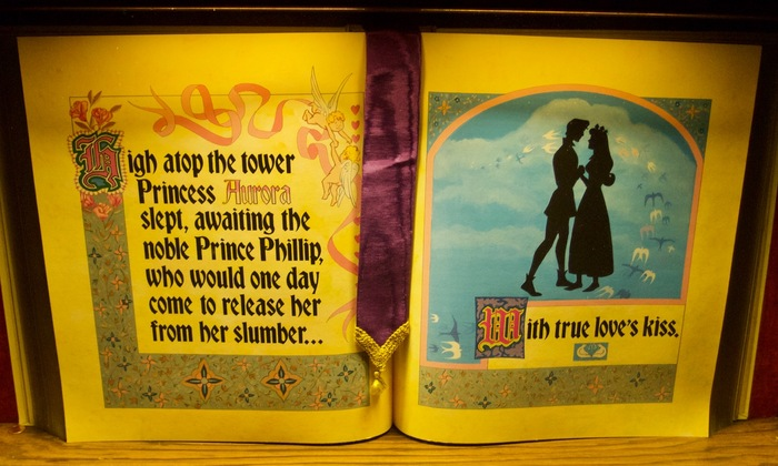 Sleeping Beauty Castle Storybook 6