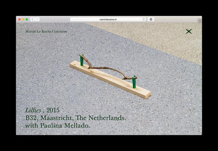 Website Martín La Roche Contreras 4
