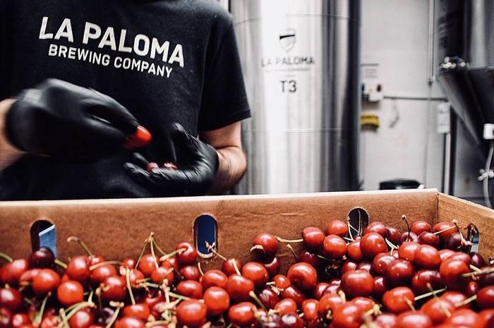 La Paloma Brewing Co. 3