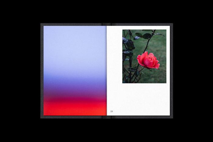 2012–17: A Photographic Retrospective – Yarron Frauenfelder 3