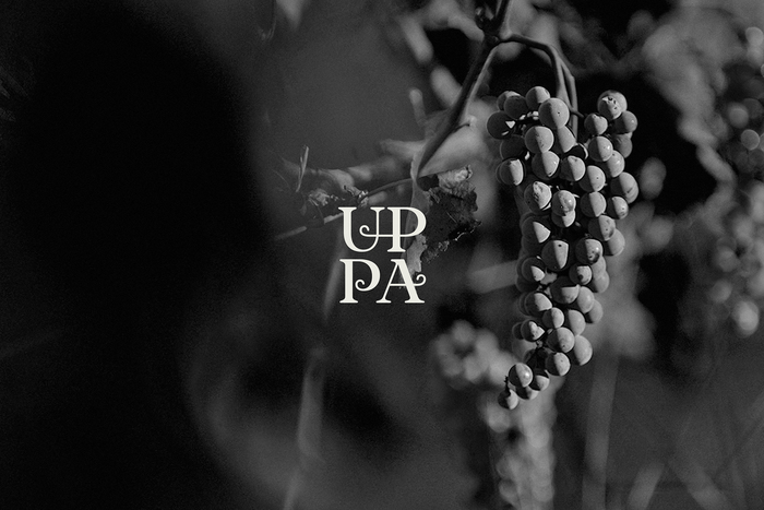 UPPA Winery 2