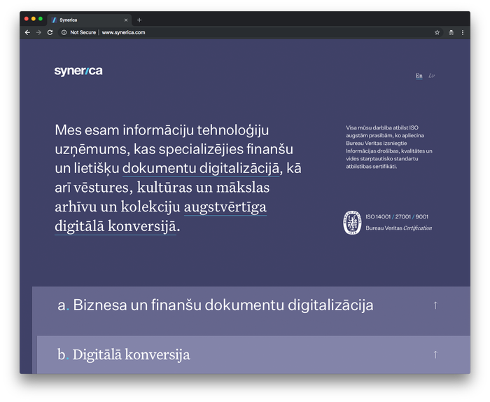 Synerica 2