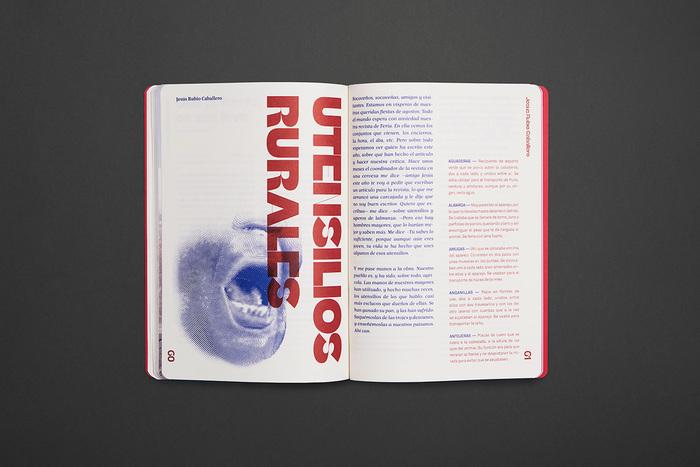 Socovos magazine 2018 6