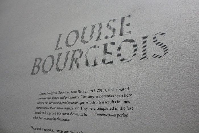 Louise Bourgeois — An Unfolding Portrait 3