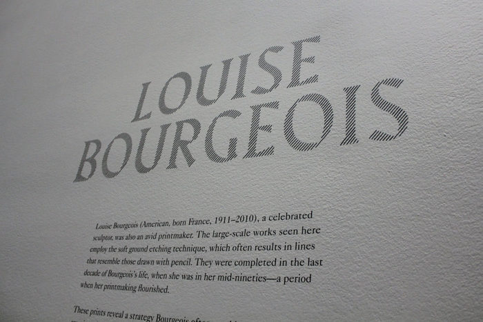 Louise Bourgeois — An Unfolding Portrait 3