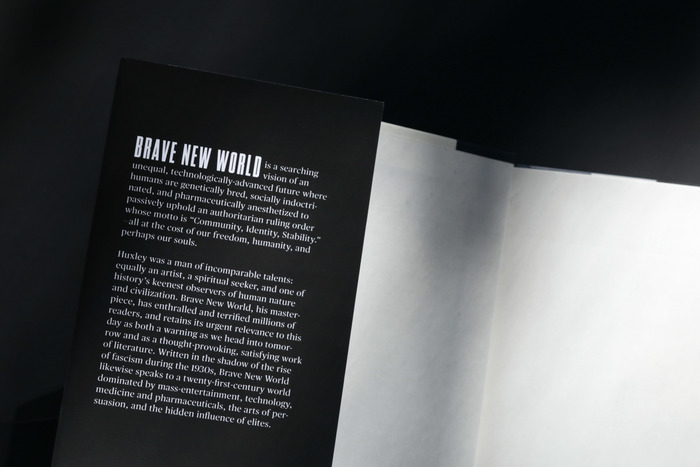 Brave New World (student project) 3