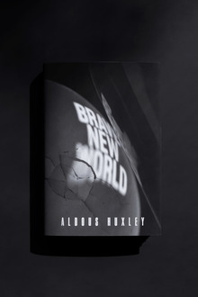 <cite>Brave New World</cite> (student project)