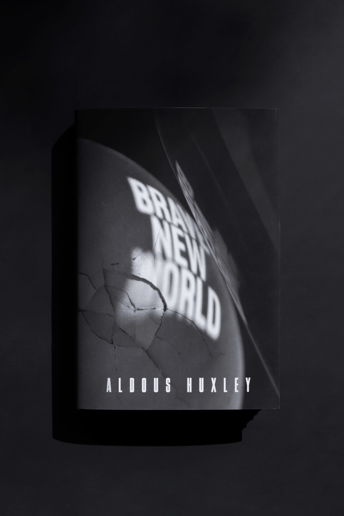 Brave New World (student project) 1