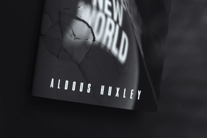 Brave New World (student project) 2