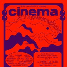 Cinéma ethnosensible