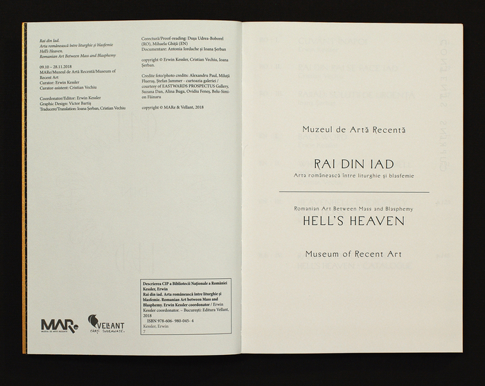RAI din IAD art catalogue 4