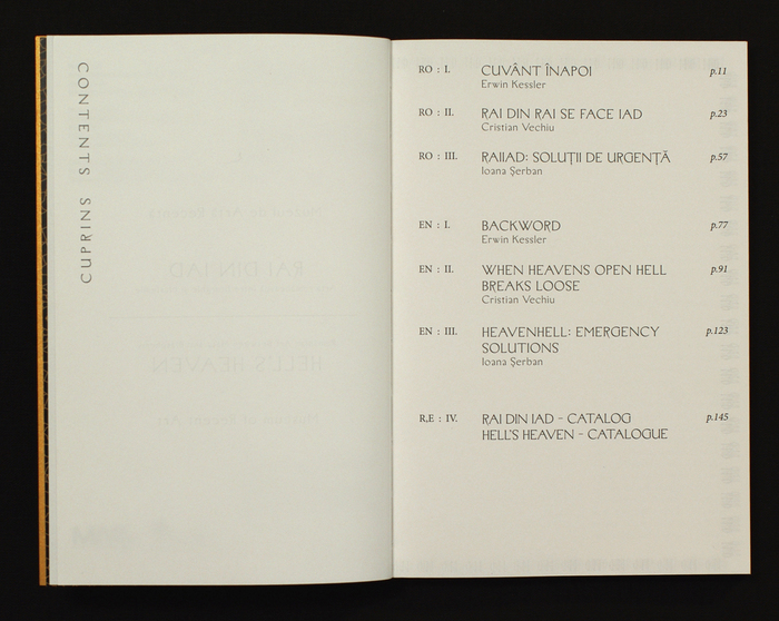 RAI din IAD art catalogue 5