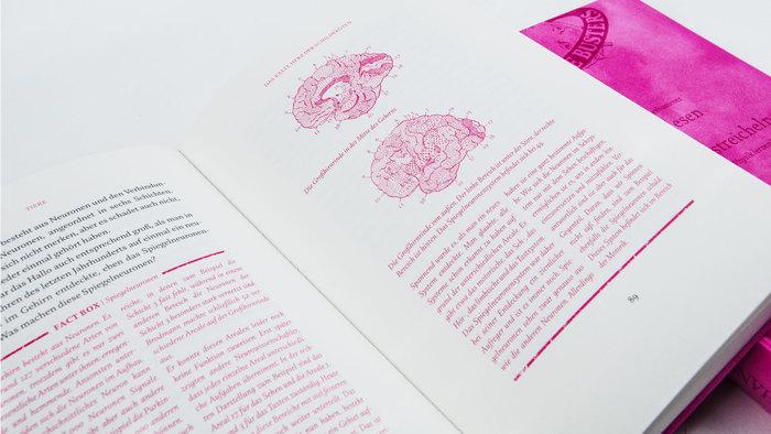 Gedankenlesen durch Schneckenstreicheln – Science Busters 2
