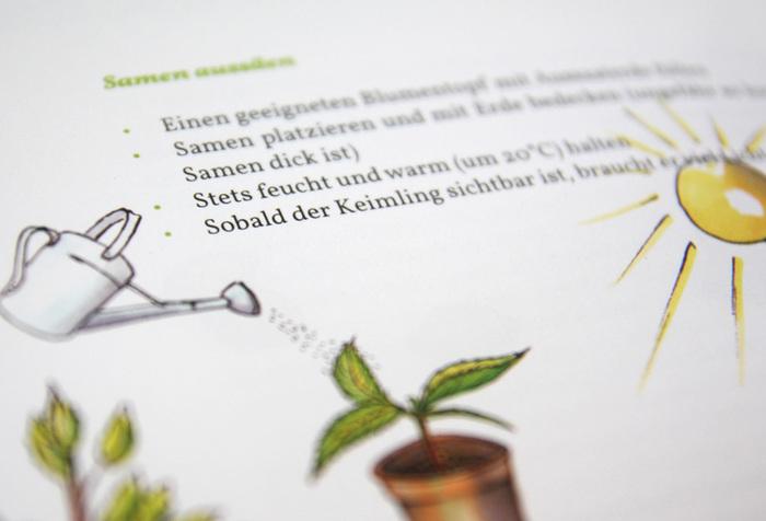 Mundräuber-Handbuch 6