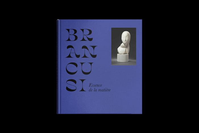 Brancusi: Essence de la matière 1