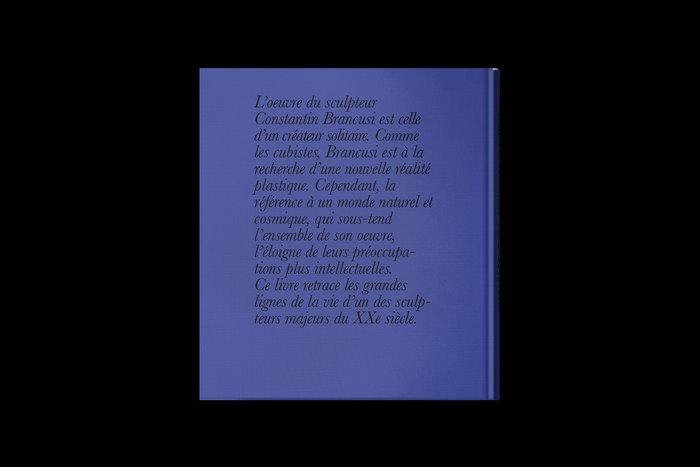 Brancusi: Essence de la matière 5