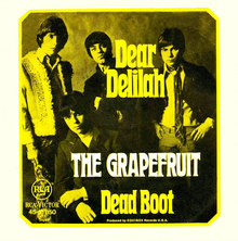 """Dear Delilah"" – The Grapefruit"