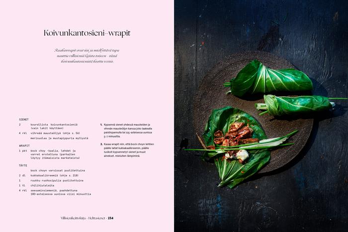 Villisienikeittokirja (The Wild Mushroom Cookbook) 7