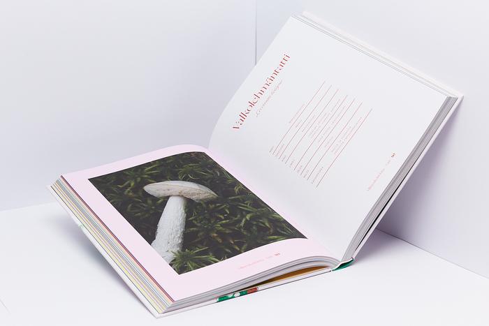 Villisienikeittokirja (The Wild Mushroom Cookbook) 5