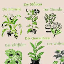 <cite>Kleines Blumen-ABC</cite>