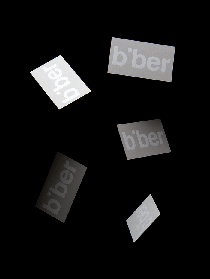 Biber Architects 1