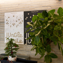 Jungle Jingle Christmas Season