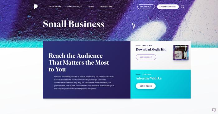 Pandora for Brands 1