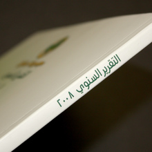 Savola Annual Report 2008