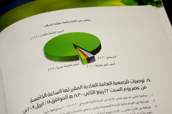 Savola Annual Report 2008 6