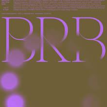 BRB Symposium (2018)